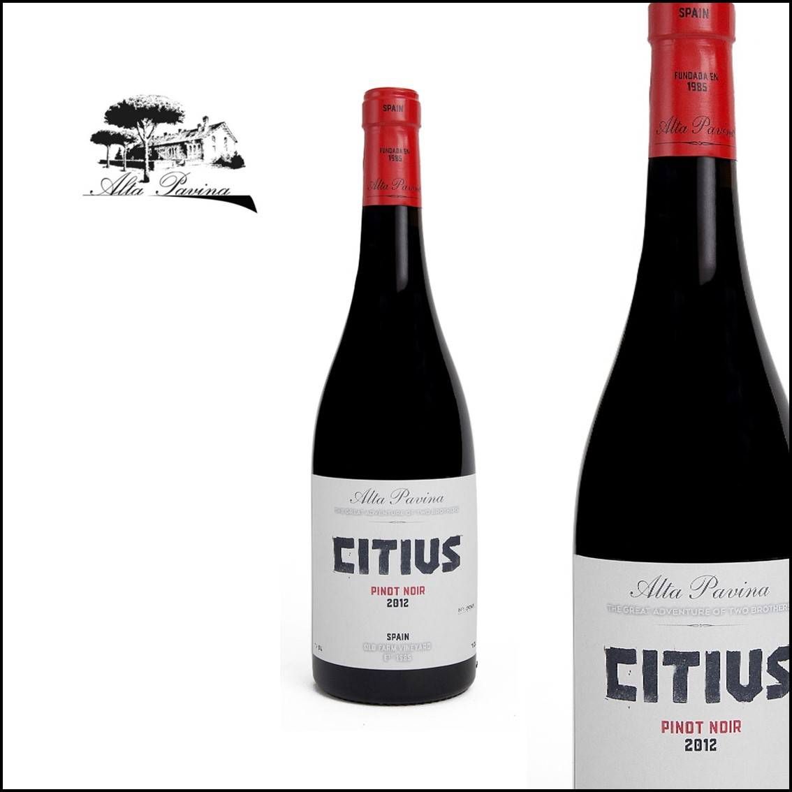 Alta Pavina «Citius» Pinot Noir 100%